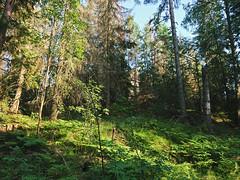 Utsikteen, Romsåsen, Askim, Indre Østfold, Norway