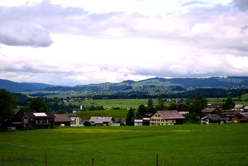 0291  Landscape Andelsbuch
