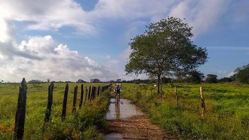 After a rainy season in the Sertão da Bahia ... #bike #euvoudebike #aventura #mountainbiker  #mountainbike #bicicleta #mtblife #mtbbrasil #mountainbiking #clicknabike #gtloboguará #mtb #mtbfeira  #trial #temlobonatrilha