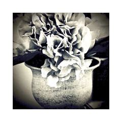 Still Life : Vase with Flowers