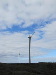 Denmark Wind Farm - Lights Beach-Wind Farm Bicycle Trail, Denmark Western Australia