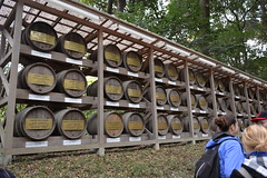 On the other side of the path were barrels of Bourgogne wine