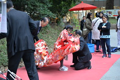 A kid gets dressed in a traditional Japanese kimono