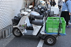 Motor scooter adapted to carry fresh fish