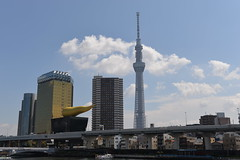A far view of the Tokyo Sky Tree