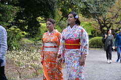 Tourists dressed in traditional Japanese kimonos