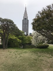 An Empire State like building at the far end of the park