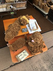 Beautiful coir crocodile and turtles- coir, here in Japan?