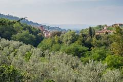 Loro Ciuffenna, Tuscany