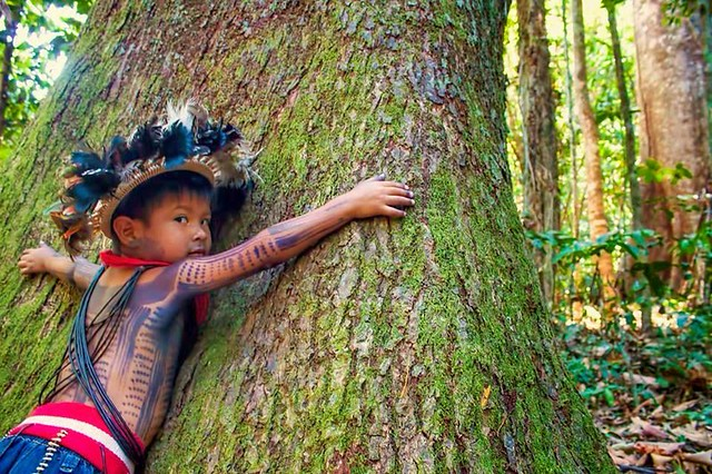 Para os povos indígenas, a chamada mãe terra é fonte de vida, espaço religioso e de convivência - Créditos: Foto: Reprodução