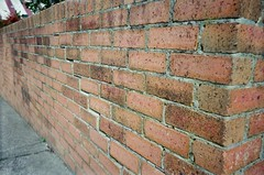 More bricks