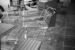 Two shopping trolleys