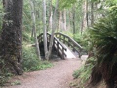 Puntledge Park Footbridge