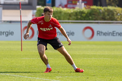 Training 1. FC Köln am 27.08.2019