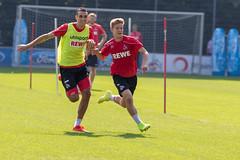 Vincent Koziello und Innenverteidiger Ellyes Skhiri beim Fußballtraining vor dem nächsten Bundesligaspiel