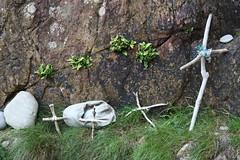 Driftwood Crosses