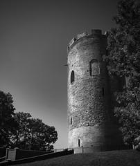 Tower of Kamyenyets / Каменецкая башня