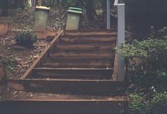 Steps (photo 2)