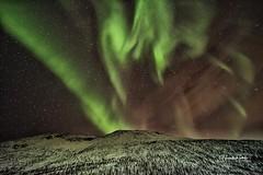 La Dama de Verde baila en el Ártico Senja Noruega