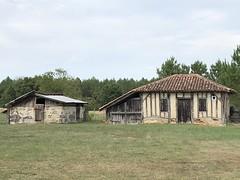 Maisons landaises (40 - France)