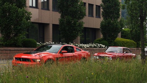 Ford Mustang & Alfa Romeo Giulia GTA