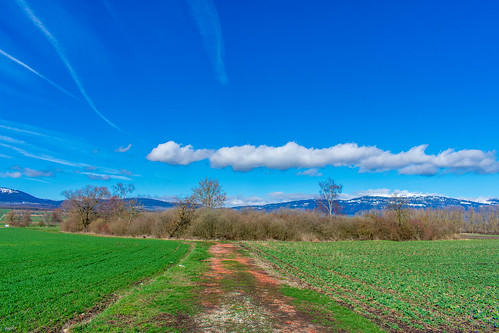 Entre-Roches, Chavornay