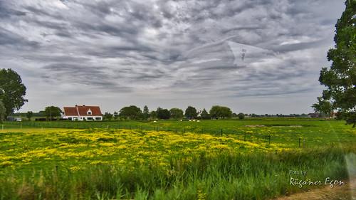 Landschaft von Westflandern