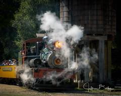 2019 08 Redwood and Railroads