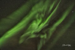 El baile de la dama verde Auroras Boreales en Isla de Senja