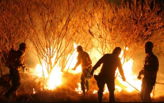 Bolsonaro decide acabar com as queimadas por decreto