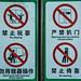 2019 - Shanghai - Maglev Rules