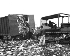 Montlake Dump, 1964