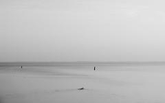 Swimmer - Strijenham