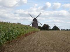 Terdeghem .- Moulin St Arnoult ou Steenmeulen