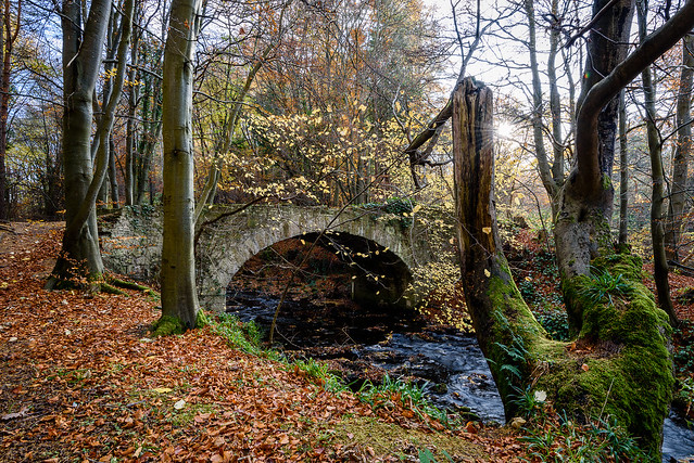 Old Arch Bridge, Gore Water