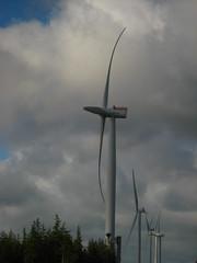Wind Turbines at Test Centre Østerild