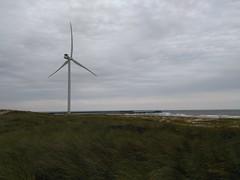 Wind Turbine In Hvide Sande