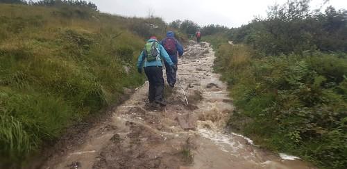 20190830_122622       Very Wet Derrymore Walk.  30th August 2019.
