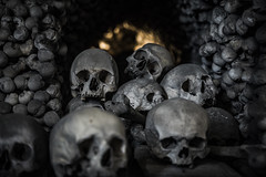 <20190411> Kutna Hora - The Bones