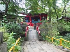 Inokashira park / 井の頭公園