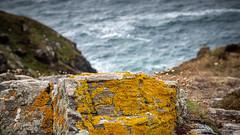 2019 07 16 Cape Cornwall137