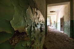 Close-up of peeling paint on the wall in an old abandoned building