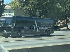 Hampton Jitney 167