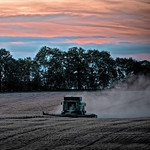 Last of the harvest light by Derek Dewey-Leader
