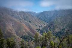 _WCB7577 Big Sur- Buzzard's Roost hike