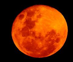 scarborough moon, 2019 (10)