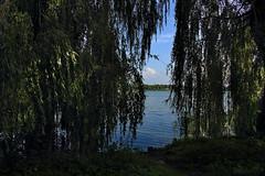 Am Bordesholmer See (01)