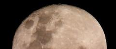 scarborough moon, 2019 (12)