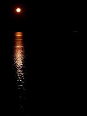 scarborough moon, 2019 (14)
