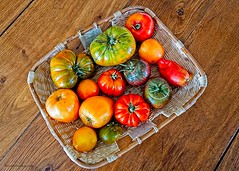 Tomatoes. - Photo of Montliot-et-Courcelles
